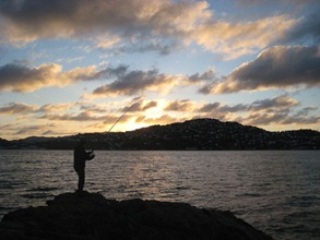 Surfcasting at Shelly Bay